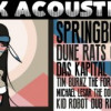 Park Acoustics 3rd Birthday | South African Music