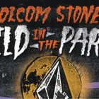 Volcom Stone's Wild in the parks Skateboarding Contest