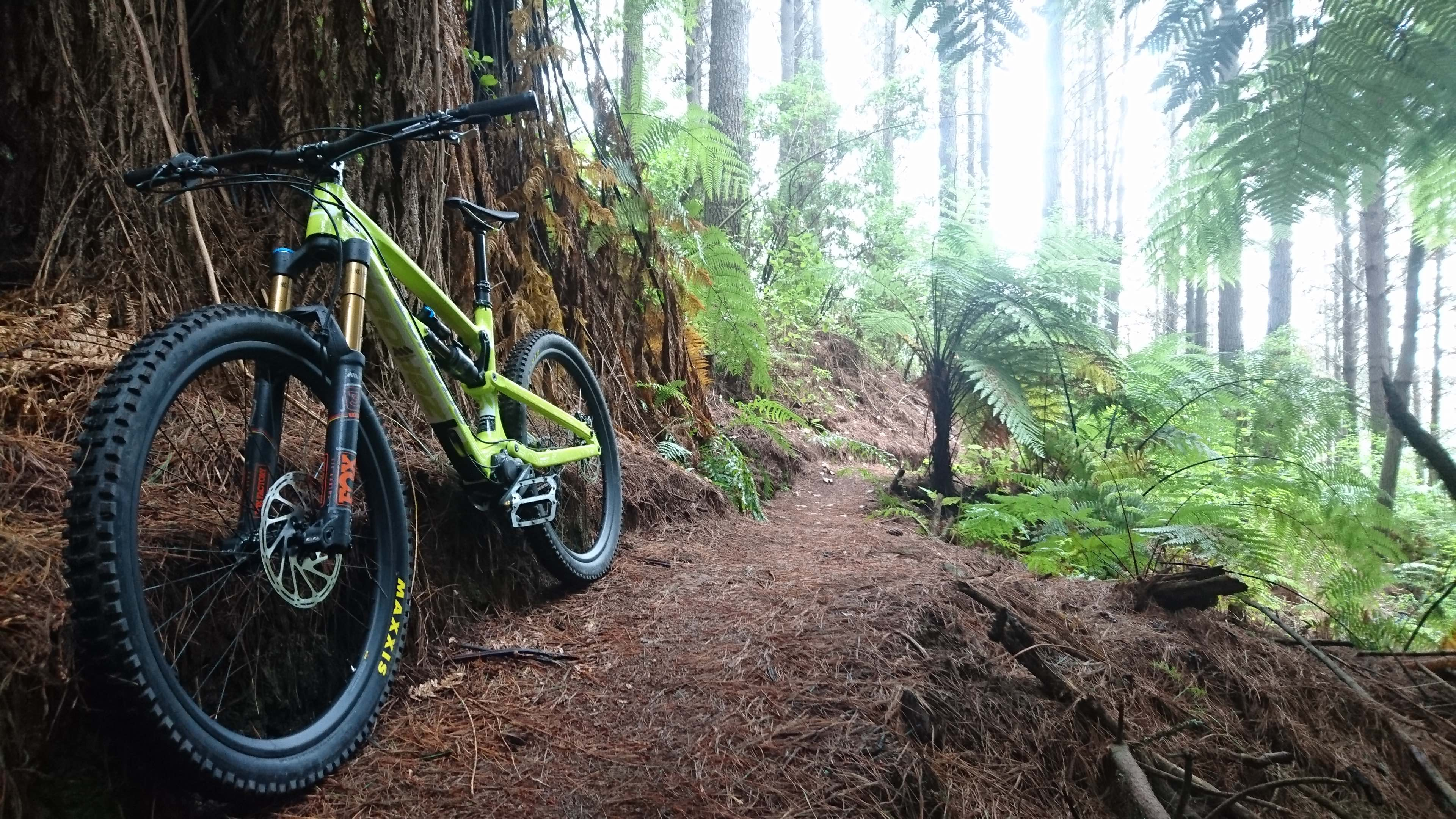 The Zerode Taniwha Enduro MTB machine in its natural habitat