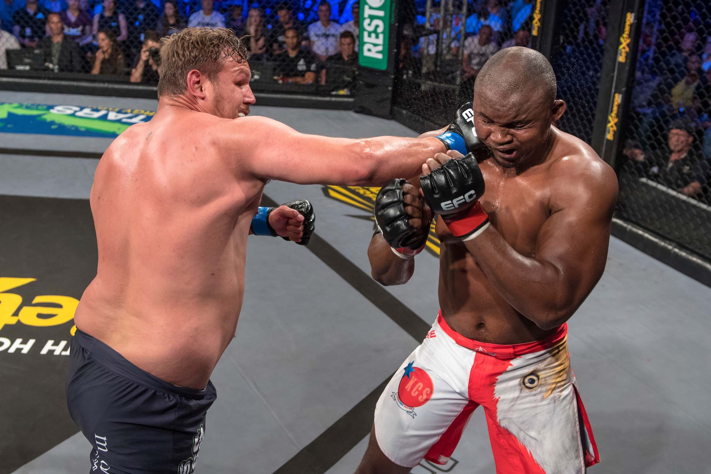 Wessel Mostert vs Ricky Misholas