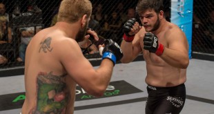 MMA action from EFC 44 from Carnival City