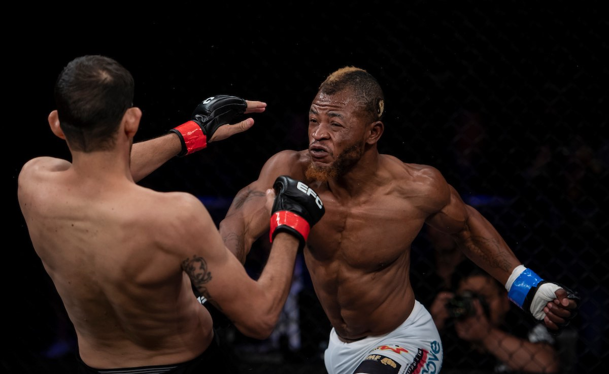 Results from all 11 MMA fights from EFC 73