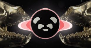 Veranda Panda have done remix of one of their original tracks, Full Tilt. Take a listen to the Top Lobster Remix here.