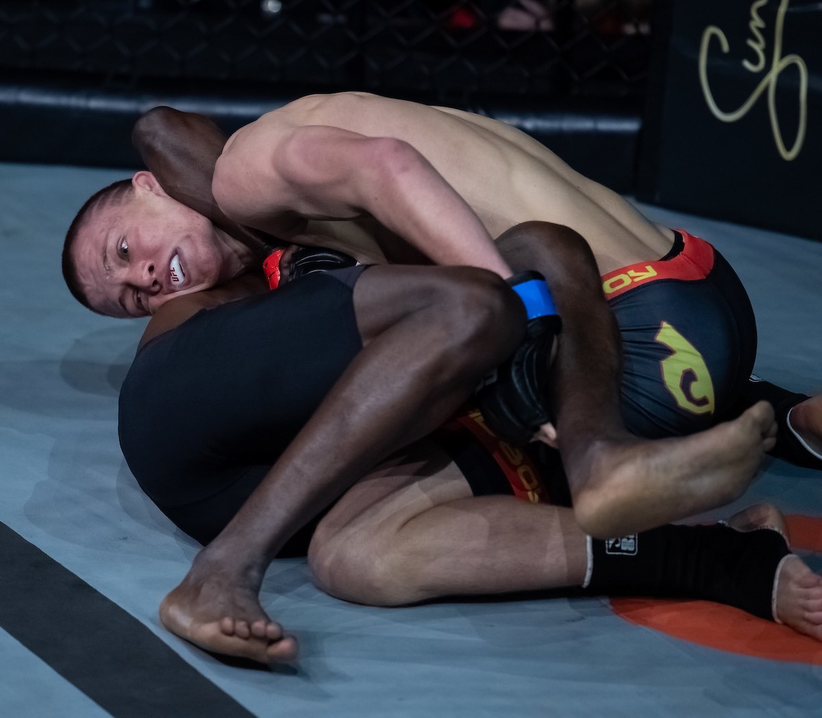 Results from all 10 Mixed Martial Arts fights from EFC 81
