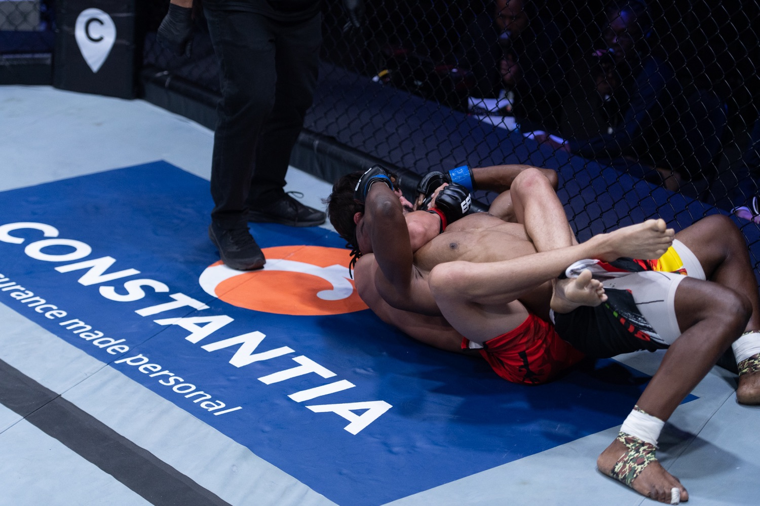 MMA Action from EFC 86